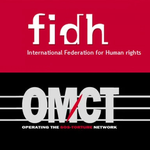 FIDH and OMCT release a publication